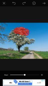picsart-fotograf-dagılma-efekti